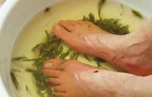 茶叶水泡脚有什么好处